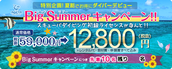 BigSummerキャンペーン!スキューバダイビング初級ライセンスが12,800円!