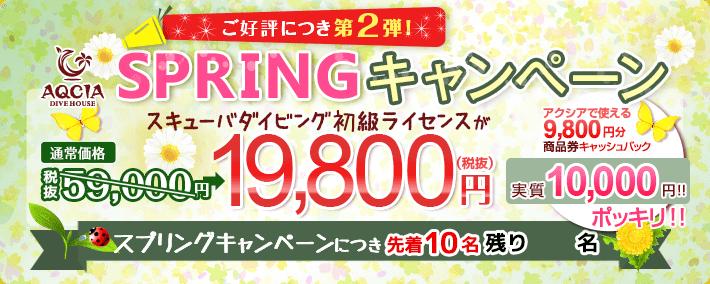 SPRINGキャンペーン スキューバダイビング初級ライセンスが 19,800円 先着10名様