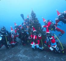 海中クリスマス