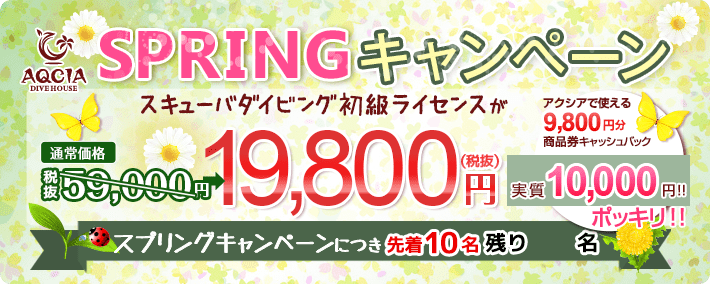 SPRINGキャンペーン スキューバダイビング初級ライセンスが 19,800円 商品券9800円キャッシュバック実質10,000ポッキリ 先着10名様
