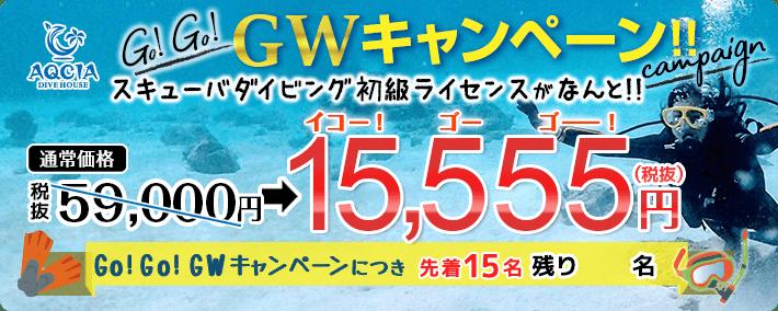 GWキャンペーン スキューバダイビング初級ライセンスが 15,555円(税抜) 先着15名様