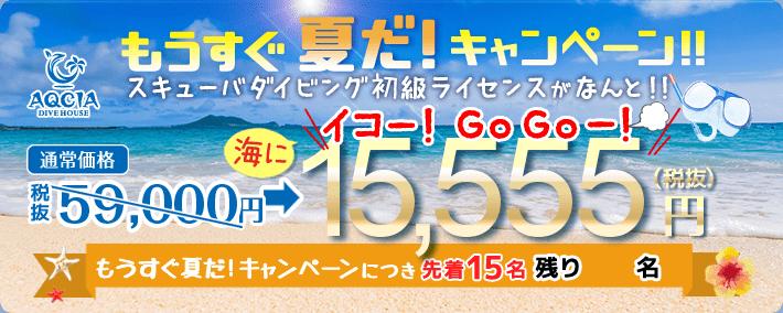 もうすぐ夏だキャンペーン スキューバダイビング初級ライセンスが 15,555円(税抜) 先着15名様