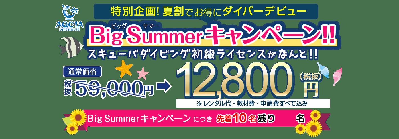 特別企画!夏割でお得にダイバーデビュー BigSummerキャンペーン スキューバダイビング初級ライセンスがなんと!12,800円(税抜) 先着10名様