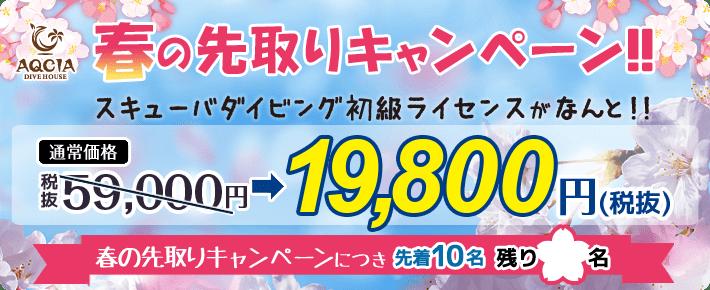 春の先取りキャンペーン スキューバダイビング初級ライセンスが 19,800円 先着10名様